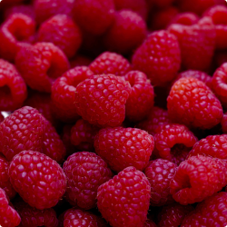 Frugtpasta - Lampone